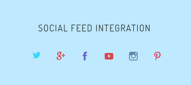 Social Feed Integration